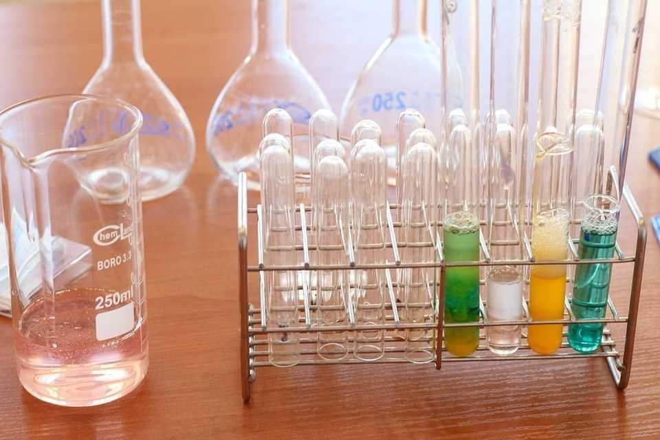 Laboratory diagnostics services market in Poland: growth drivers and barriers