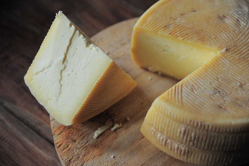 Cheese and dairy market analysis in Poland